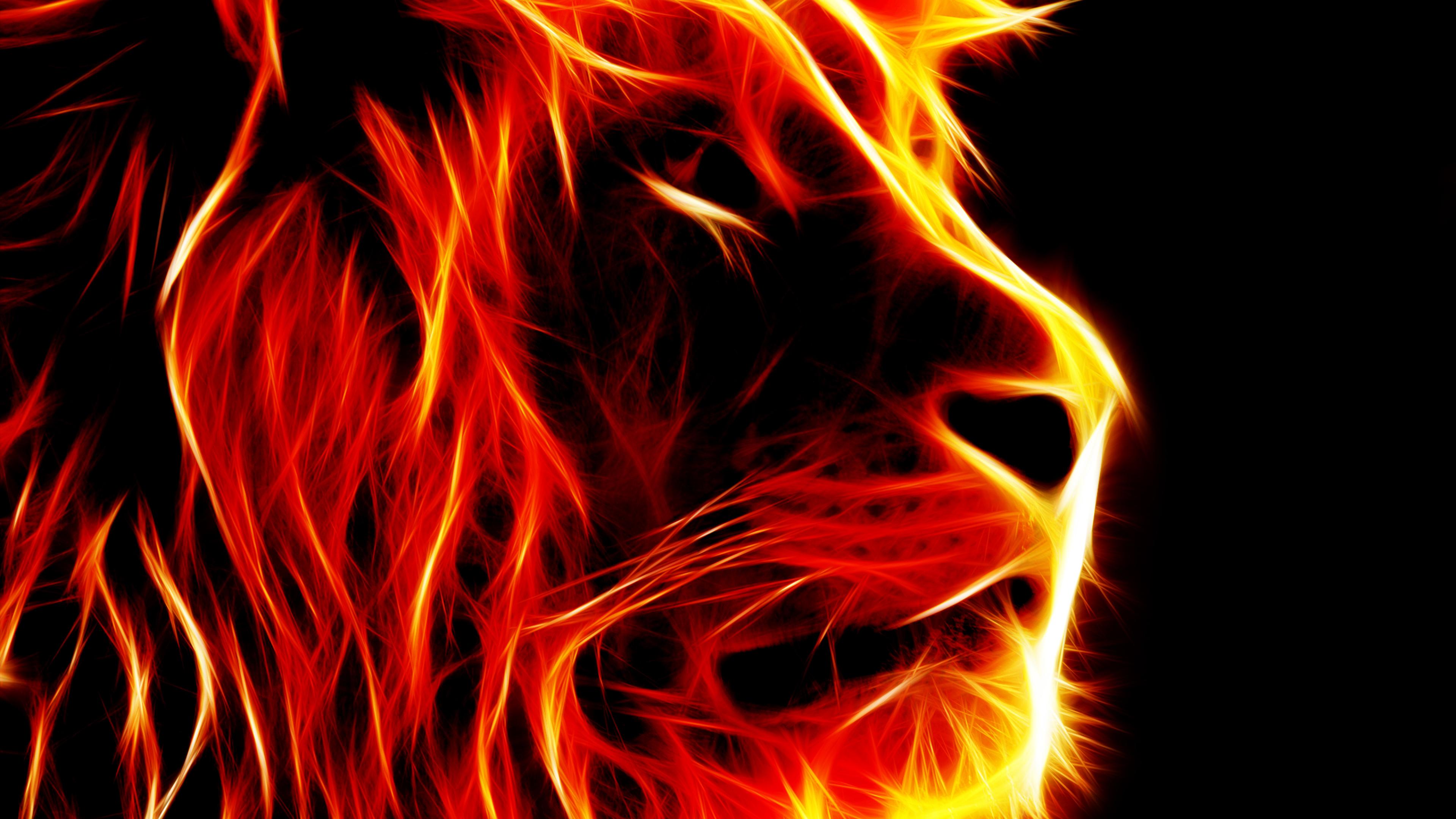 3d Fire Lion Wallpaper