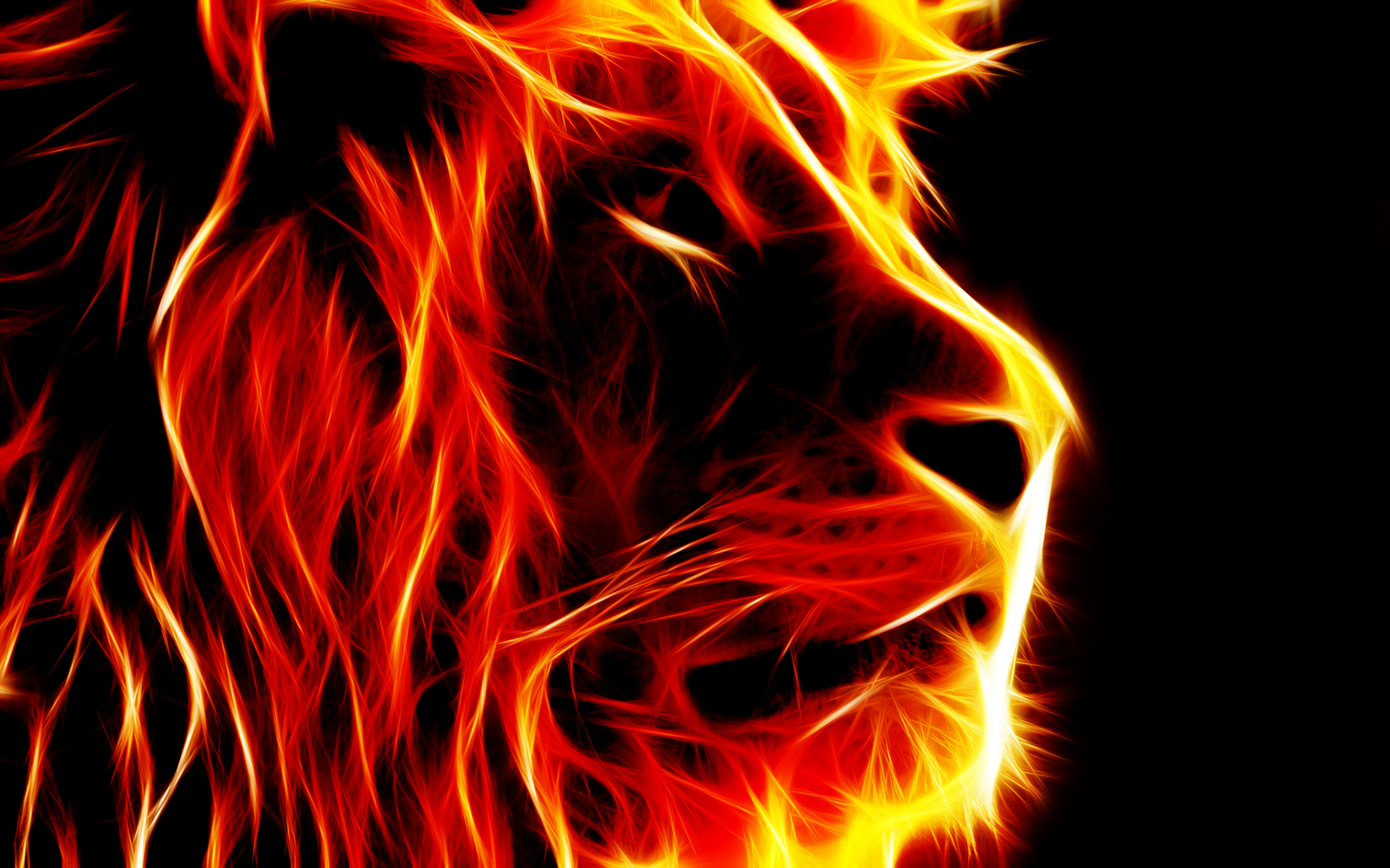 3d Fire Lion Wallpaper