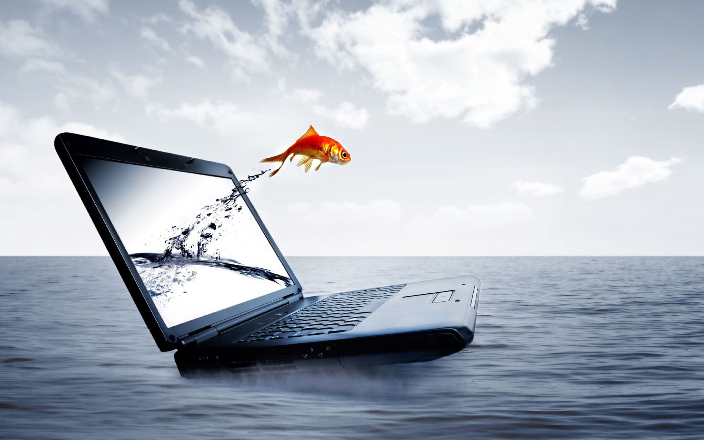 3d Laptop Gold Fish Jump Sea