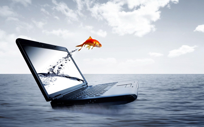 3d laptop gold fish jump sea