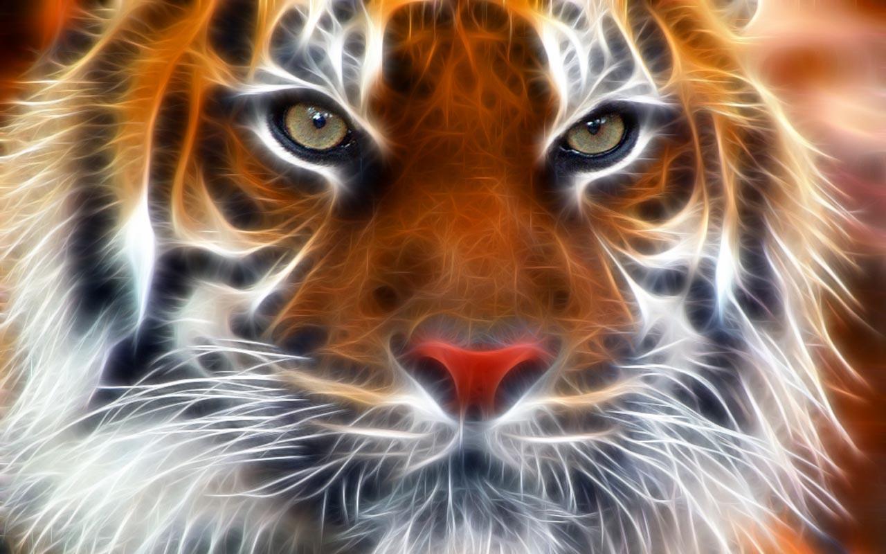 3d tiger face