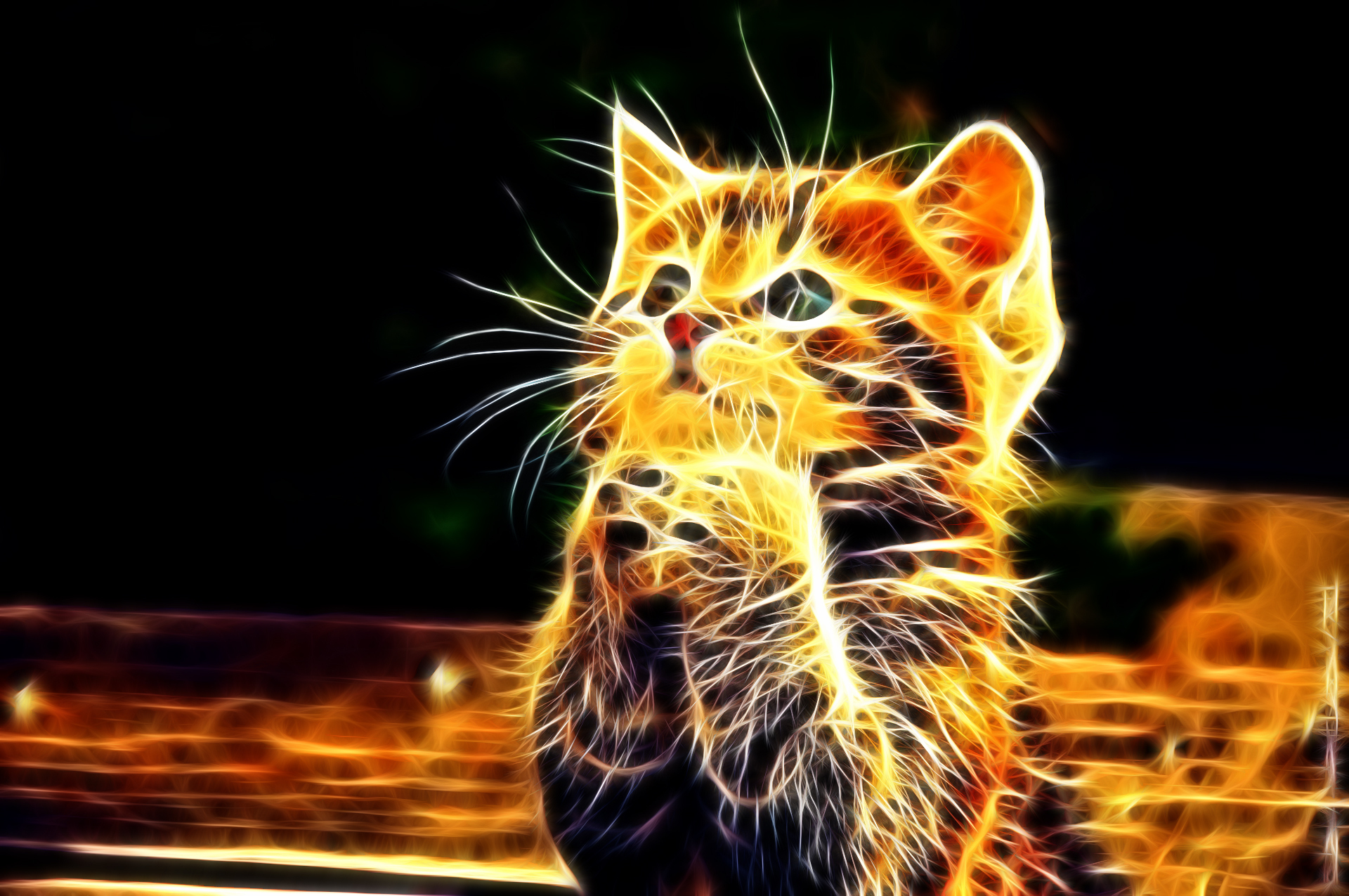 3d cat praying pose