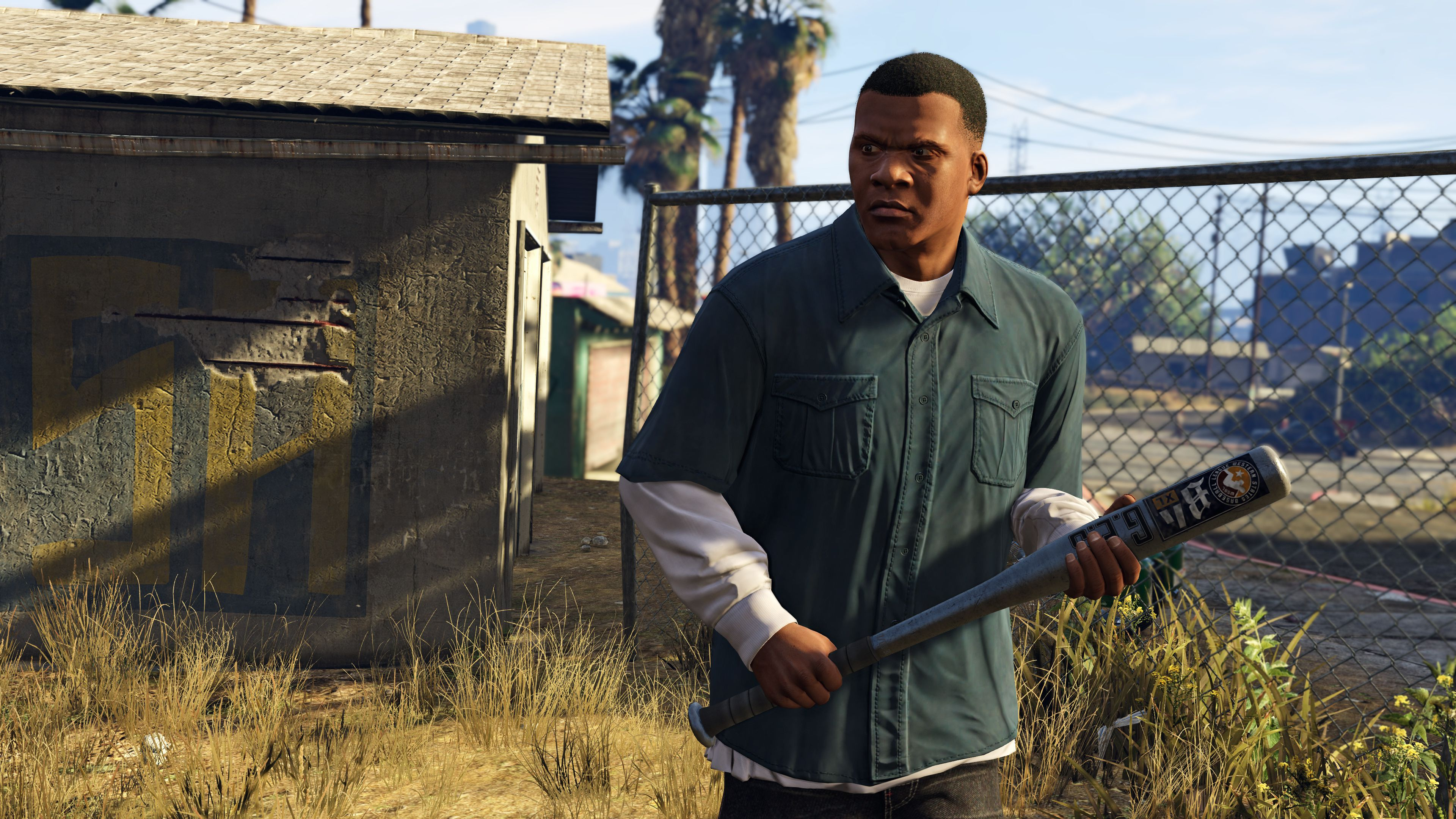 Gta 5 Franklin Clinton