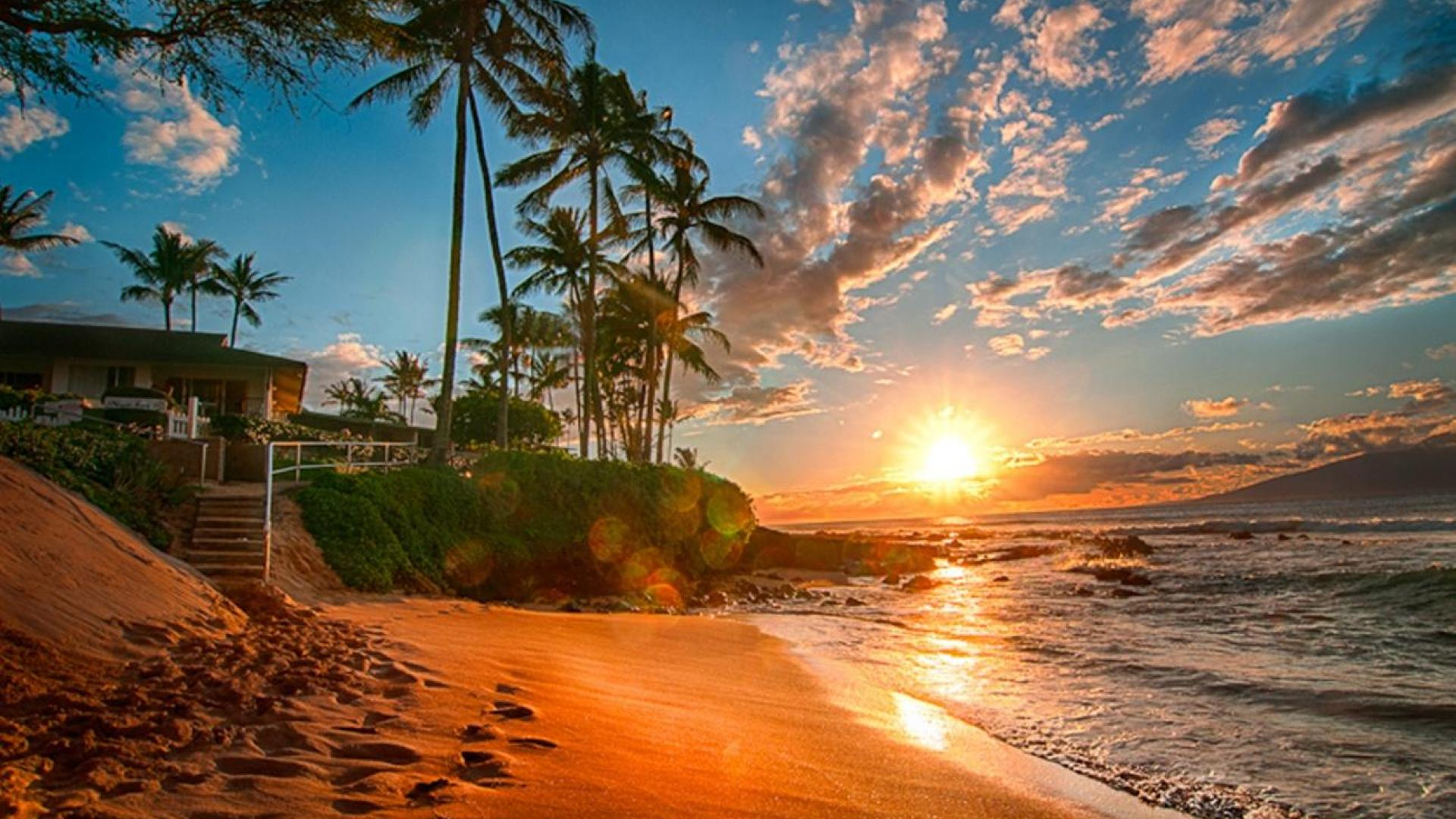 hawaii beach sunset